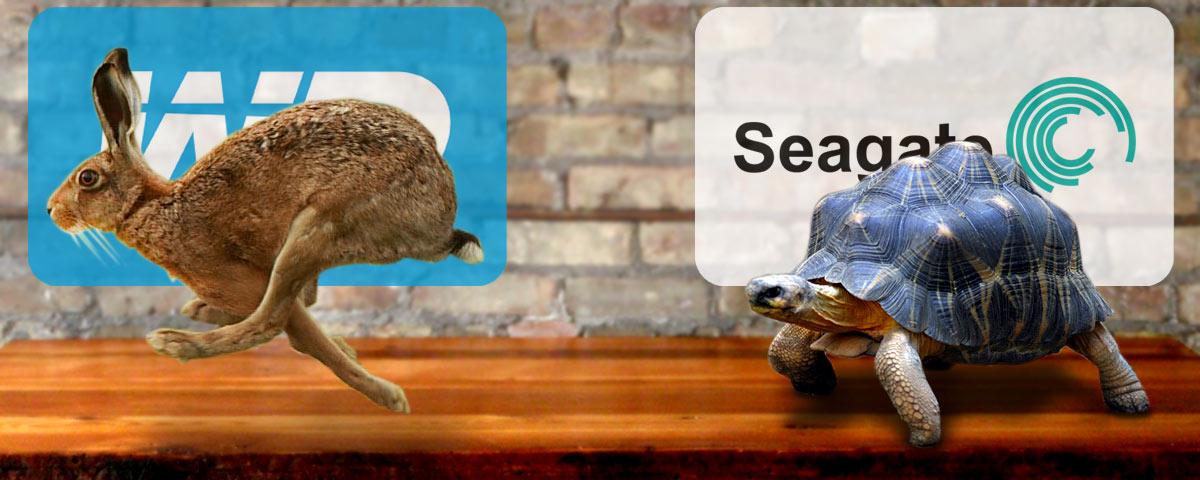 Tortoise (Seagate) vs. Hare (Western Digital)
