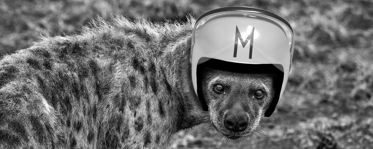 Hyena Speedracer helmet